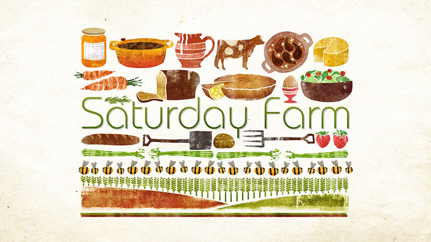 Saturday Farm 1